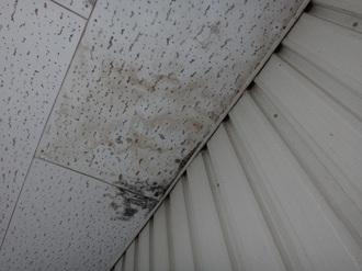 洋室の雨漏り2