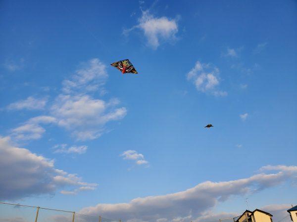 久しぶりの凧揚げですサムネイル